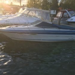 Motorboot SeaRay 210 Monaco CC