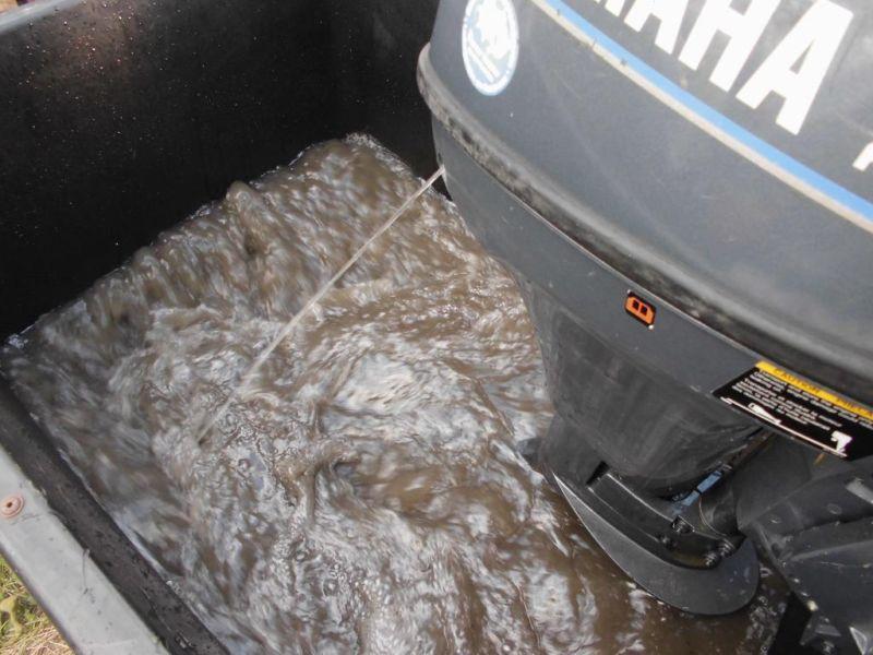 Aussenbordmotor Yamaha 6 ps mit Bodenseezulasung Kurzschaft