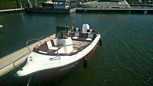 Schönes Konsolenboot mit 40PS AB und Trailer beides Bj 2014